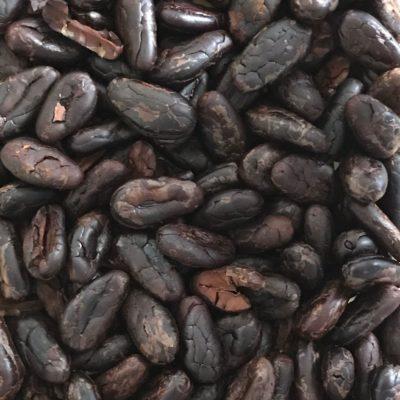 Organic Cocoa Beans (Fiji) | Chocolate-atelier